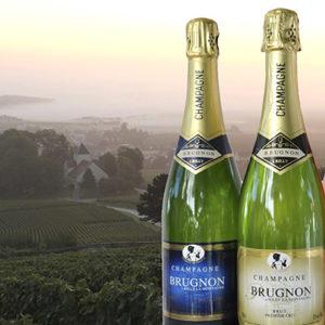 Nos services : champagne et plats cuisiné sans gluten à votre disposition